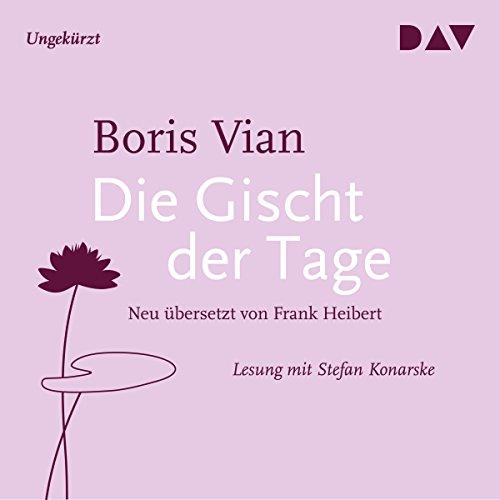 Die Gischt der Tage audiobook cover art