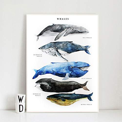 EPSMK Pintura Decorativa Spinner Dolphin Whale HD Wall Art Canvas Minimalista Acuarela Nordic Posters Impresiones Pintura Wall Pictures Dormitorio Decoración para el hogar-50x70cm
