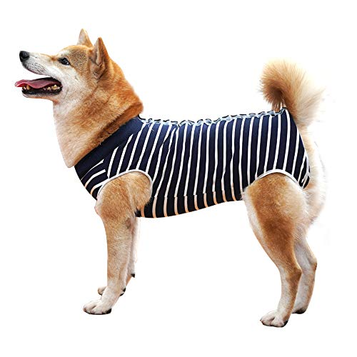 Dog Recovery Suit Abdominal Wound Protector Puppy Medical Surgical Clothes Post-Operative Vest Pet After Surgery Wear Substitute E-Collar & Cone (M, Blue Stripe)