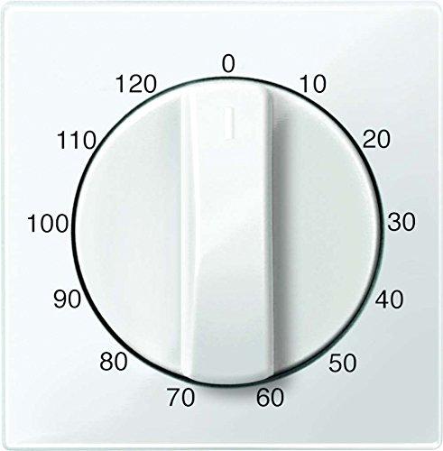 Merten 567519 Zentralplatte für Zeitschalter-Einsatz 120 min, polarweiß glänzend, System M