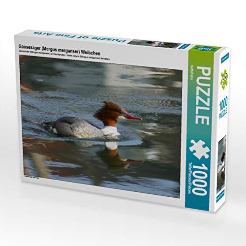 CALVENDO Puzzle Gänsesäger (Mergus Merganser) Weibchen 1000 Teile Lege-Größe 64 x 48 cm Foto-Puzzle Bild von Kattobello