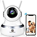BLACK DOG Smart Home Security HD 1080P Wi-Fi IP Nanny Camera | Dog Camera | Dome Camera for Baby, Elderly and Pet monitoring | PTZ, Motion Detection, Night Vision, iOS, Android, Windows, Cloud Storage