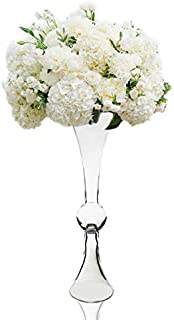 CYS EXCEL Glass Trumpet Vase, Reversible Latour Clarinet Design, Center Piece Floral Display for Events & Weddings, Pack of 1 (Clear)