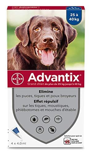 Advantix Spot On per cani oltre 25 Kg - 4 pipette - Antiparassitario per Zecche Pulci e Pidocchi …