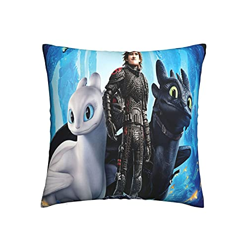 Xiaoxian Pillow Train Your Dra-Gon - Funda de almohada para sofá cama, coche, diseño de doble cara