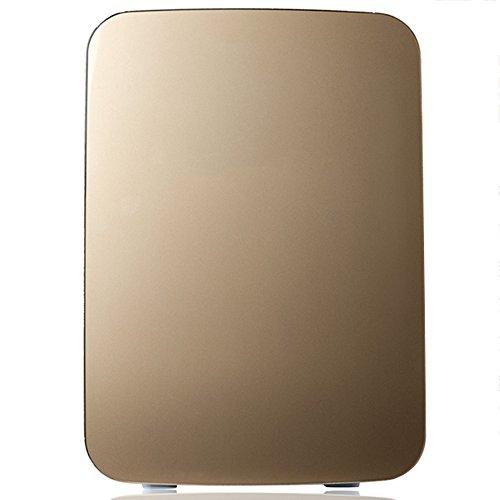 LVZAIXI Mini voiture réfrigérateur Refroidisseur & WarmerRefrigerator chauffage alimentaire électrique portable glacière voyage boîte aucun compresseur pour Camping ( Couleur : Métalliques )