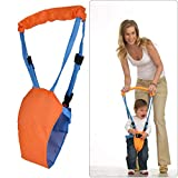 YORKING Baby Lauflernhilfe Lauflerngurt Gehhilfe Laufhilfe Gehfrei Orange Baby Gehgürtel Walk