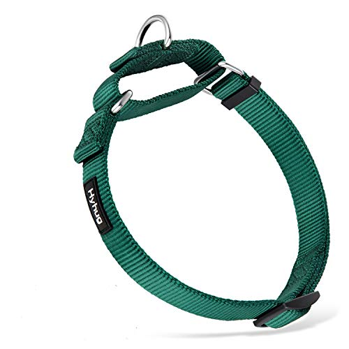Best Non Slip Dog Collars