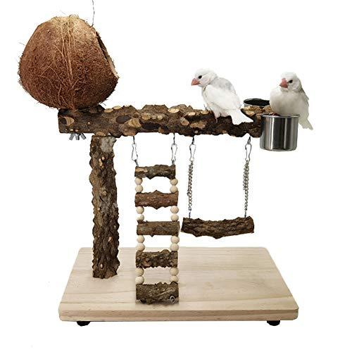 ZWW Parque Infantil para Loros, Naturaleza Madera Cockatiel Soporte con Nido De Cáscara De Coco | Perico Perchas Centro De Actividades De Gimnasio con Columpio/Escaleras/Comedero