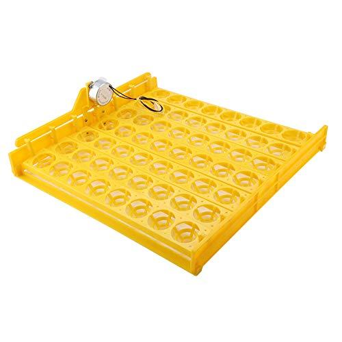 Bicaquu Incubadora de Huevos, Mini incubadora Digital automática de 56 Huevos, Bandeja giratoria para Huevos, Herramienta para Pollos, Patos, Ganso, pájaros(02)