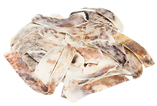 NaDeco Placuna Placenta in Streifen ca. 0,25kg Perlmuttstreifen Capiz-Muschel grobe Perlmuttscheiben Perlmuttplatten Maritime Dekoration