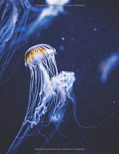 Aquarium Tagebuch: Planer, Notizbuch, Bestandsbuch, Futterplan für alle Auqarianer und Aquaristik Fans ♦ Logbuch für über 100 Einträge ♦ A4+ Format ♦ Motiv: Qualle