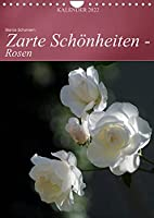 Zarte Schoenheiten - Rosen (Wandkalender 2022 DIN A4 hoch): Edle Koeniginnen der Blumen in ganzer Bluetenpracht (Monatskalender, 14 Seiten )