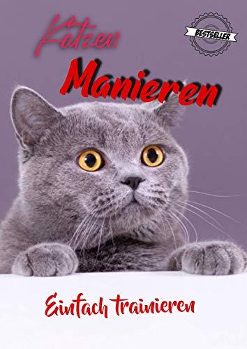 Katzen Manieren-trainieren