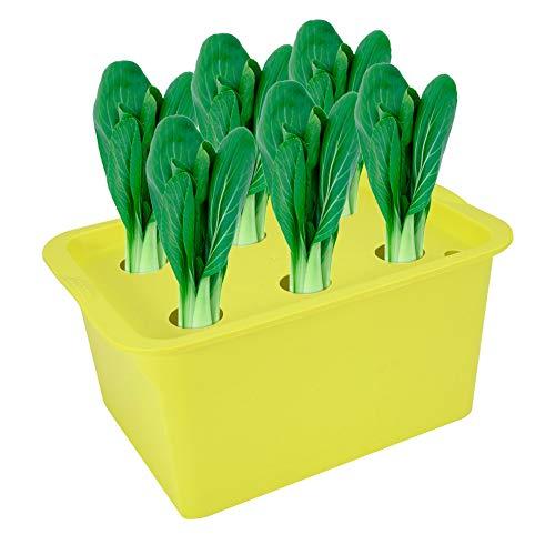 Pots de germination Boîte de Semis 6 Trous Conteneur de Site d'Usine Kit Bubble Garden Jardinières Pots de Pépinière Intérieur Extérieur Serre Culture de Légumes Boîte de Plantation (vert)
