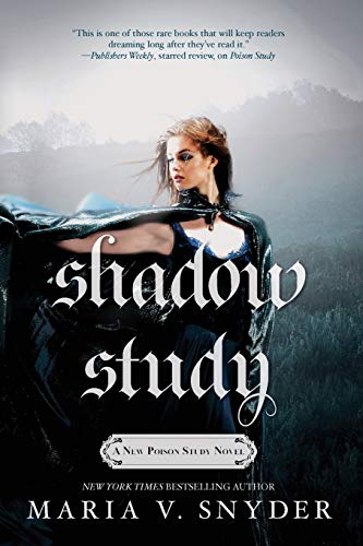 Shadow Study (Study Series)