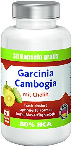 Garcinia Cambogia mit 80{c964196612f3a08463174592a32779bfc71f9b128378b3a5c4c4e51c52695d87} HCA, 1890mg Garcinia, 120 Kapseln: Premium ANGEBOT!! bestes Preis-Leistungsverhältnis, hergestellt in Deutschland, extrem hohe Bioverfügbarkeit, hoch dosiert, rein natürlich