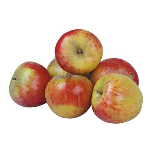 Cox Orange Äpfel süß säuerlich vom...