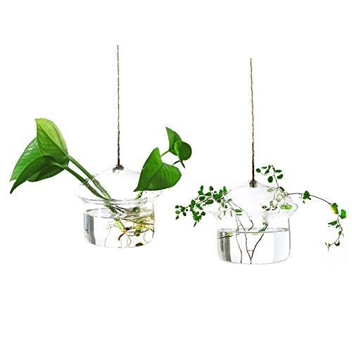 Ivolador Mushroom-Shaped Hanging Glass Flower Planter Vase Terrarium Container for Hydroponic Plants Home Garden Decor