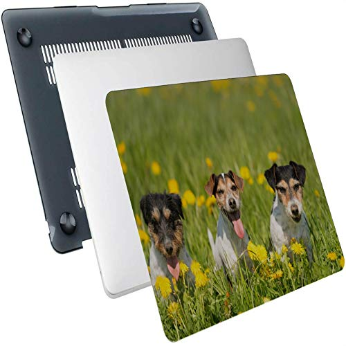MacBook Pro 2017 Accessories Three Cute Dogs Lying in A Dandelion Meadow Plastic Hard Shell Compatible Mac Air 13' Pro 13'/16' Mac Cases Protective Cover for MacBook 2016-2020 Version