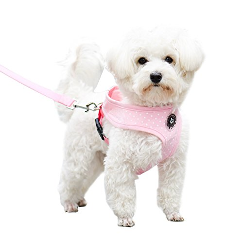 EXPAWLORER Pink Small Soft Mesh Polka Dots Dog Harness with Matching Leash
