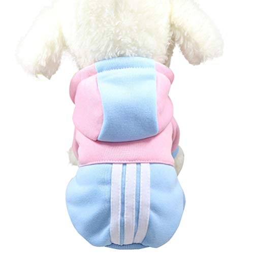 Bluelucon huisdier hondenkleding, honden winter warme kleurblok hoodie met capuchon Puppy kostuum kleding hondpullover sweater Chihuahua hondenjas vest