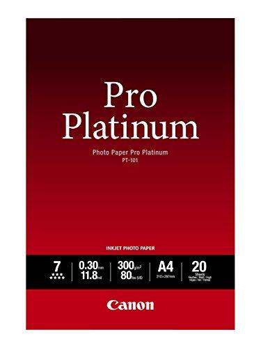 Canon 2768B016 PT-101 pro platinum photo paper inkjet 300g/m2 A4 20 Blatt Pack & Canon SG-201 Fotopapier Plus Seidenglanz, matt (260 g/qm), A4, 20 Blatt