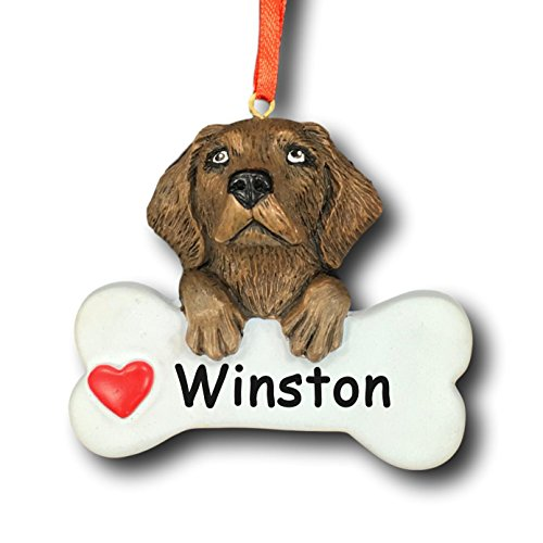 Rudolph and Me Personalized Chocolate Labrador Retriever Dog Christmas Tree Ornament Gift for Pet Featuring Dog Bone with Red Heart Detail - Customized with Your Dog's Name