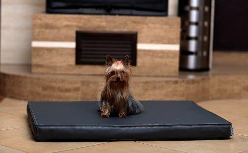 tierlando Carlos Ortho-Medic Orthopädische Hundematte Kunstleder Visko Hundebett Matratze: Größe: M - 80x60cm - CA3- | Farbe: 02 Graphit