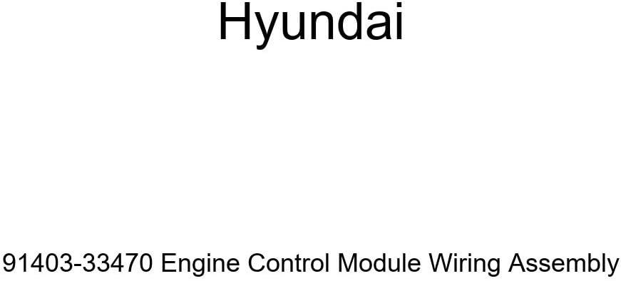 Genuine Hyundai 91403-33470 Limited price Engine Control Module Assembl Wiring Ranking TOP1