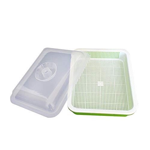Dadahuam Kit de Germination, boîte de Culture épaissie pour semis avec Couvercle, Plateau pour semoir de semences pour Jardinage intérieur