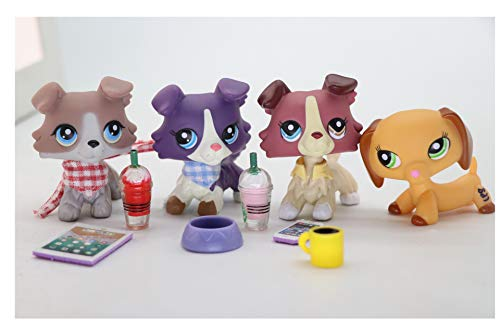 WOLFGIRL LPS Collie Set 1676 1262 67 Purple Red Grey LPS Dachshund 2597 Blue Eyes with Accessories Lot Dog Puppy Figure Collection Kids Girls Boys Birthday Xmas Gift