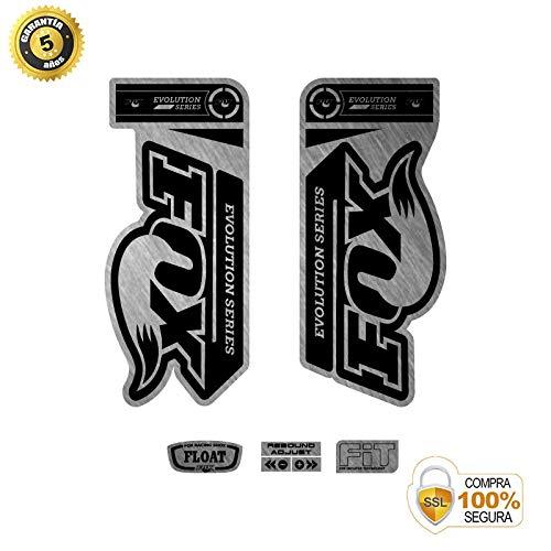 Buy ADHESIVOS MOTOS CLASICAS Bike Stickers - Bike Decorative Sticker - Vinyl Bike Sticker Set Evolut...
