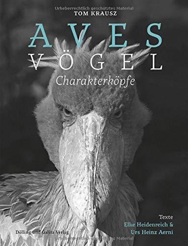 Aves   Vögel. Charakterköpfe
