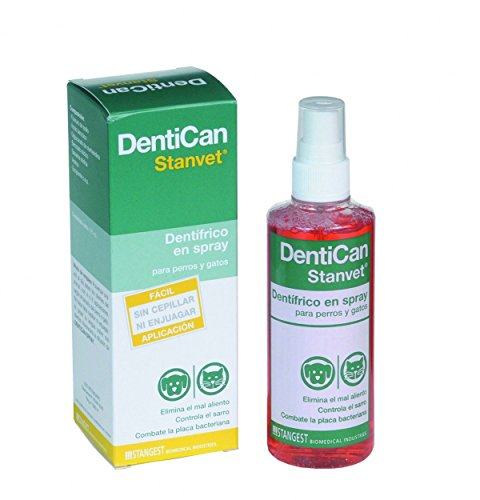 Stangest Dentican Spray Dental - 125 ml