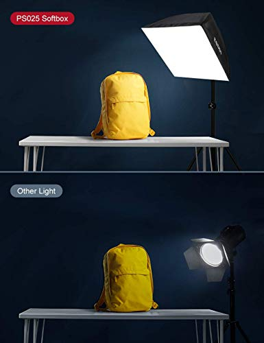 ESDDI Softbox Photography Lighting Kit 20 x 28 inch with 800W and 5500K Soft Lights, Continuous Lighting for Portraits and Product Shooting with Carry Bag
