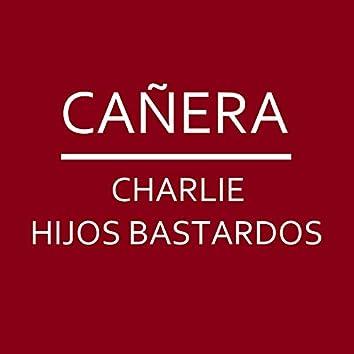 Cañera
