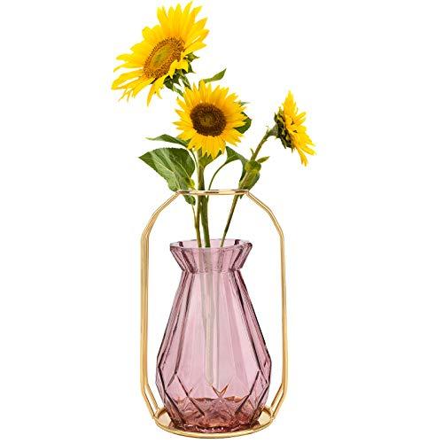 Vaso in Vetro,3 colori a scelta Vaso da Fiori con in metallo telaio Vasi in vetro per fiori di fiori moderno per soggiorno Camera da letto Cucina Compleanno Decorazioni per feste matrimonio Purple