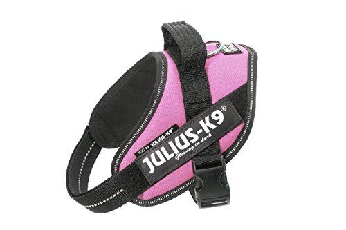 Julius-K9, 16IDC-PN-M, IDC-Powergeschirr, Hundegeschirr, Größe: S/Mini, pink
