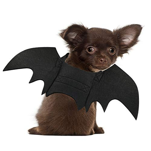 RYPET Cat Bat Costume - Halloween Pet Costume Bat Wings Cosplay Dog Costume Cat Costume for Party XS