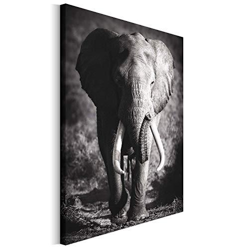 Revolio 80x120 cm Leinwandbild Wandbilder Wohnzimmer Modern Kunstdruck Design Wanddekoration Deko Bild auf Leinwand Bilder 1 Teilig - Elefant Tier schwarz-weiß grau