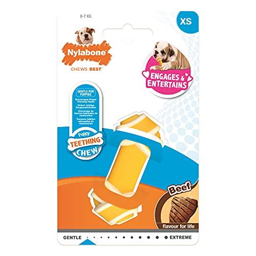 Hueso masticable con Nudo para Cachorros de Nylabone | Masticable para Perros | Sabor a Ternera | Juguete masticable para Cachorros molestias de dentición | XS | Perros y Cachorros de hasta 7 kg
