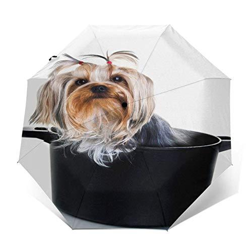 Paraguas para niños Funny Yourkie Puppy Cute Dog Auto Open Close Small Compact Travel Sun Uv Rain Paraguas plegables a prueba de viento Parasol corto portátil y ligero para niños y niñas adolescentes