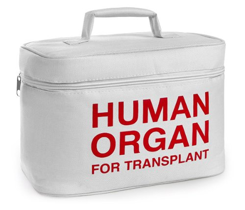 ThinkGeek ORGANTRANOrgan Transport Lunch Cooler