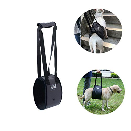 Tineer Dog Lift Harness Support Sling for Elderly or Disabled Dogs - Support Harness Rear Help Weak Legs Stand Up, Walk, Climb Stairs - Walking Auxiliary Belt for Medium Large Dogs (S, Grey)