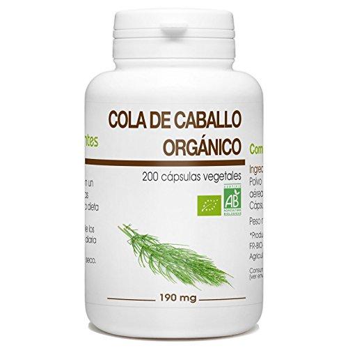 Cola de caballo Orgánico - Equisetum arvense - 190mg - 200