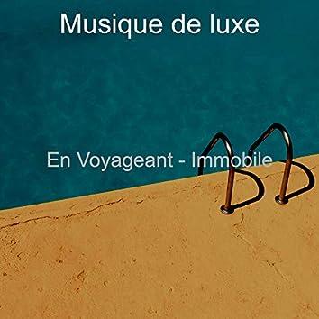 En Voyageant - Immobile