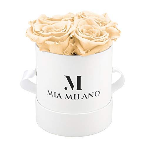 Mia Milano ® Boîte de roses avec 4 roses Infinity | Boîte à fleurs (boîte cadeau pour la Saint-Valentin) fleurs conservées 3 ans de durabilité (Blanc - Champagne)