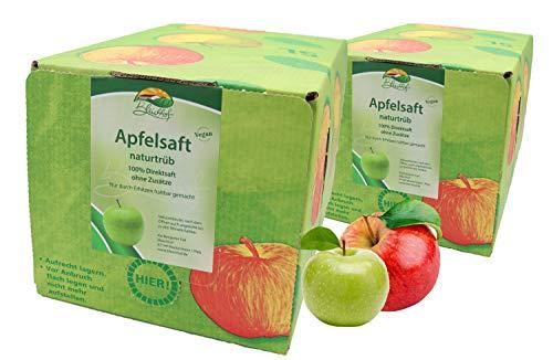 Bleichhof Apfelsaft naturtrüb - 100% Direktsaft, vegan, OHNE Zuckerzusatz, Bag-in-Box (2x 5l Saftbox)