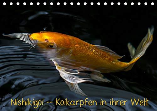 Nishikigoi – Koikarpfen in ihrer Welt (Tischkalender 2021 DIN A5 quer)